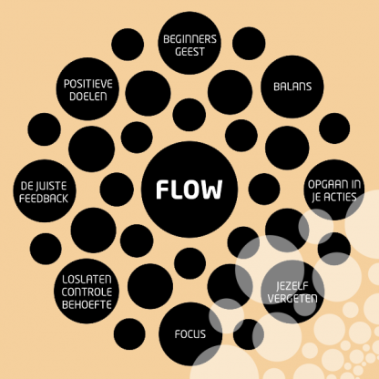 Flowmanagement hoofdstukken